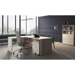 Despacho completo de oficina Tipo H